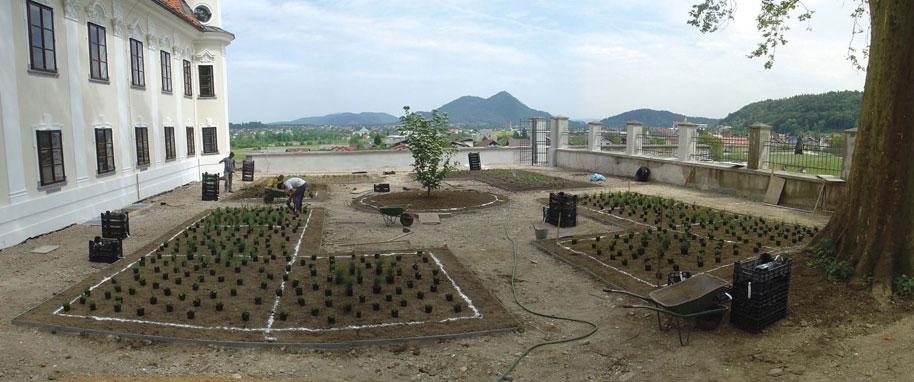 Sajenje rastlin