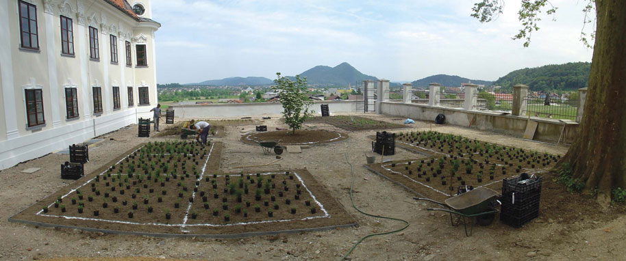 Planting of plants